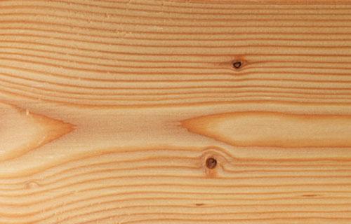 plateatico-larice-massiccio